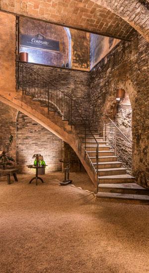 Tour Langhe Roero e Monferrato